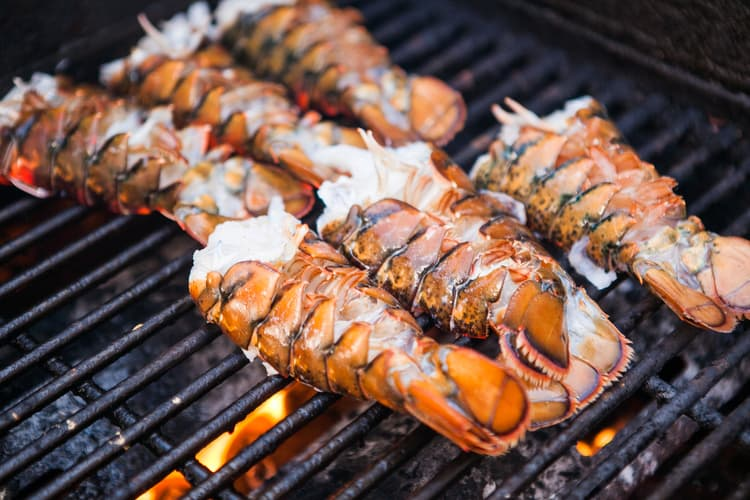 lobster festival with lobsters on a grill florida cbc