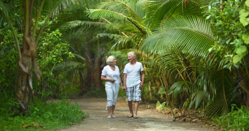 an older couple walk through a garden full of tropical plants