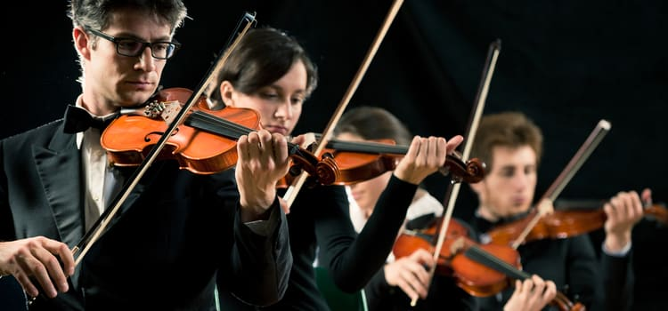 performers hold their violins and perform