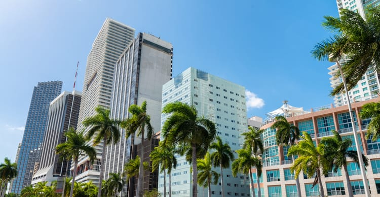 tall, gray miami buildings against a blue sky with palm trees
