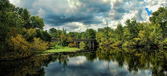 the Morris Bridge passes over the water at Lettuce Lake Park near Tampa